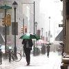 Stock_Carroll - Rain