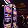 Gambling brain study