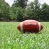 high school football participation